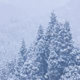 天気予報の事ですが、降水量1ミリの時 雪にすると何ミリ積もるのかわかる方いますか?