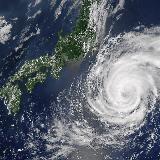 首都直下もしくは南海トラフなど大地震で神奈川県の右側(川崎市、横浜市、横須賀市三浦市など)には津波はきますか?