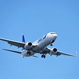 ナリタブライアンが好きで飛行機は羽田ではなく成田派の人いますか( ゜д゜)?