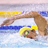 瀬戸大也さんは水泳選手じゃなかってもモテますか?