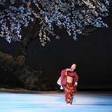 宮川町の舞妓シアターってなんでしげ森さんの舞妓さんしか出ないのでしょう??