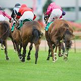 フェブラリーS、馬連1点ならどの馬ですか? 馬番の数字で書いてください。 正解なければワイドか複勝になっていた方の中で高配当な方、 それもなければ適当に独断で上位系馬でBAします。 同回答は先投稿優先です。