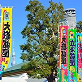 男女ノ川、東富士、千代の山、北尾、全員現役なら白鵬は関脇止まりですか?
