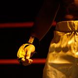 なぜパンクラスはプロレス団体から総合格闘技団体になったんですか?