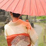 訪問着のお着物で、梅、松、桜、紅葉、藤、椿などが混ざる柄はいつからいつまで着ることが出来ますか?