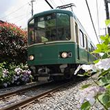 広島は都市の真ん中に路面電車が走っていますが、これは広島だけでしょうか?