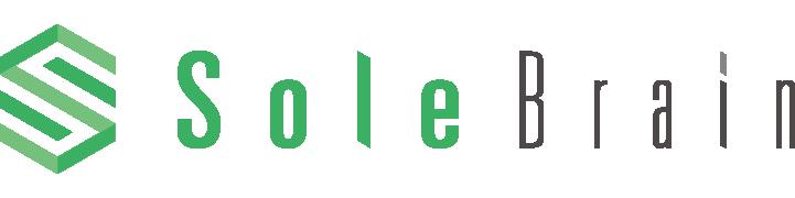 株式会社ソルブレイン