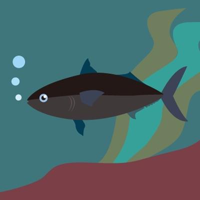 【B】クールな黒の魚