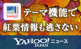テーマ機能で紅葉情報も見逃さない Yahoo!ニュース