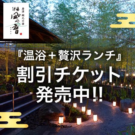 2,000円台~で贅沢な癒しの日帰り旅♪温浴+贅沢ランチ☆