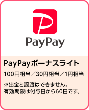 PayPayボーナスライト(100円/30円/1円相当) 期間:2020年2月1日~2020年2月29日