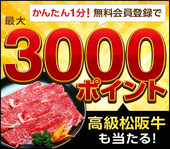 最大「GetMoney!」3,000ポイント+ 高級松阪牛が当たる!! 登録キャンペーン