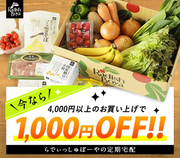らでぃっしゅぼーや定期購入1,000円OFFキャンペーン