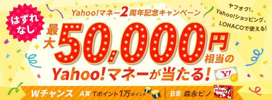 \ハズレなし/最大5万円相当のYahoo!マネーが当たる! WチャンスでTポイント1万ポイントや森永ピノも☆