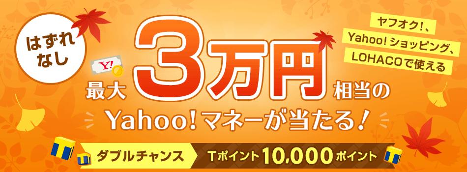 \ハズレなし/最大3万円相当のYahoo!マネーが当たる! WチャンスでTポイント1万ポイントも