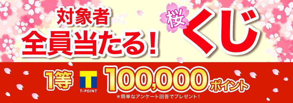 簡単な質問に答えて、最大100,000ポイントもらおう!