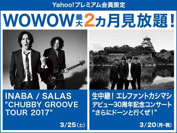 "WOWOW最大2カ月無料 3月は注目のコラボレーション INABA / SALAS ""CHUBBY GROOVE TOUR 2017"""
