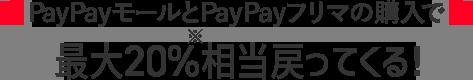 PayPayモールとPayPayフリマの購入で 最大20%戻ってくる!