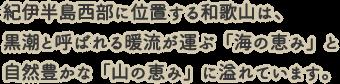 紀伊半島西武に位置する和歌山は、黒潮と呼ばれる暖流が運ぶ「海の恵み」と自然豊かな「山の恵み」に溢れています。