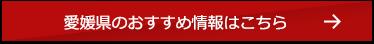 愛媛県のおすすめ情報はこちら