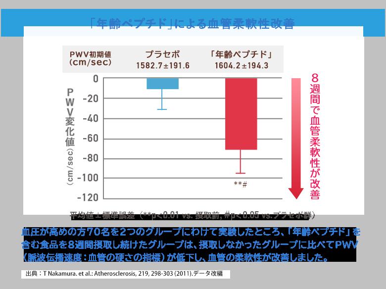 グラフ:「年齢ペプチド」による血管柔軟性改善