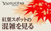 紅葉スポットの混雑を見る Yahoo!地図