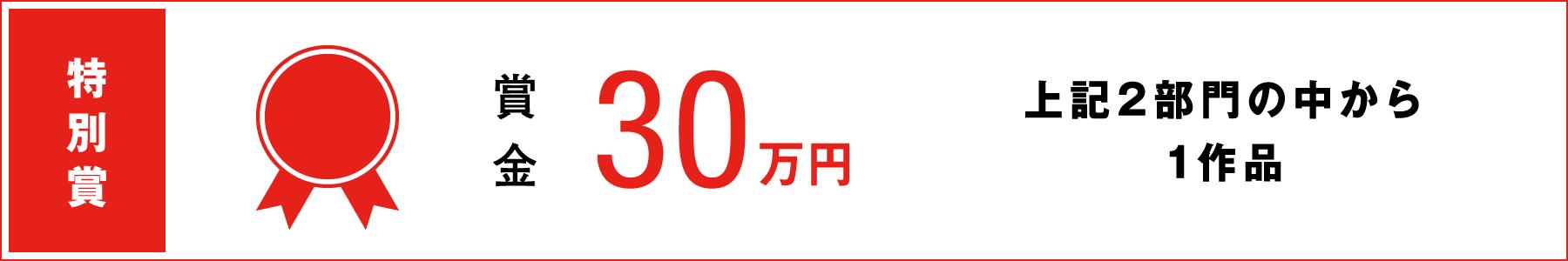 特別賞 賞金30万円