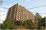 ヴィオスガーデン城山