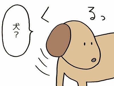「犬?」くるっ