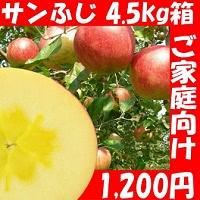 訳アリ サンふじ リンゴ 4.5kg