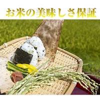 福島県産 ミルキークイーン 20kg
