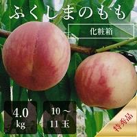 ふくしまのもも 桃 4.0キロ箱