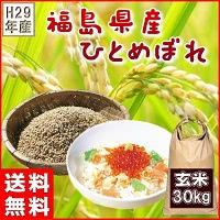 福島県産ひとめぼれ玄米30kg