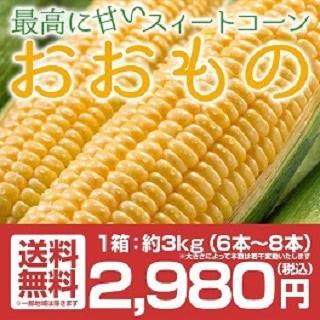 福島県産トウモロコシ おおもの 6~8本 約3kg