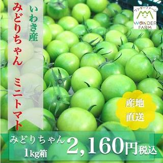 いわき産 みどりちゃん ミニトマト 1kg箱