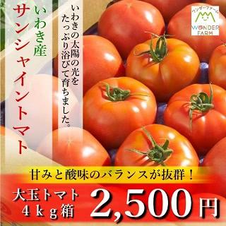 いわき産 サンシャイントマト 大玉トマト 4kg箱