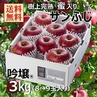 福島 樹上完熟蜜入り サンふじりんご