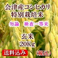 会津産コシヒカリ