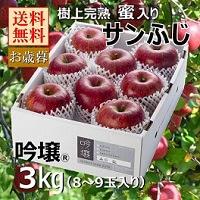 サンふじりんご 2Lサイズ 3kg