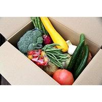 旬の野菜詰め合わせセット