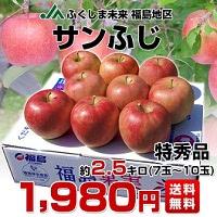 サンふじりんご 特秀品 約2.5kg