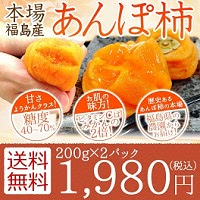 福島県産 あんぽ柿 200g×2