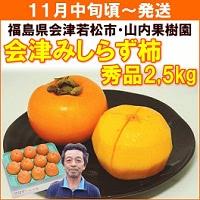 会津みしらず柿 約2.5kg