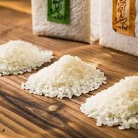 会津坂下米厳選3品種 食べ比べセット