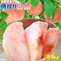 福島県産 白桃 秀 5kg