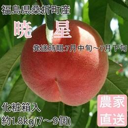 桑折町産 暁星 約1.8kg