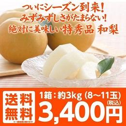 福島県産 梨 3キロ