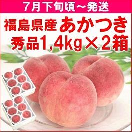 福島県産「あかつき」1.4kg