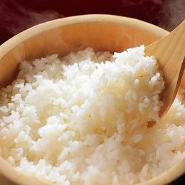 白河産コシヒカリ 10kg