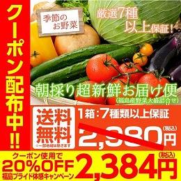 福島県産 野菜7品種詰め合わせ